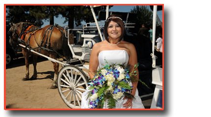 Bride arrives in her carriage where her beach wedding occurs